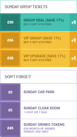 an image of the Sunday group ticket pricelist for WE ARE FSTVL 2016